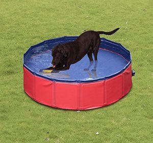 Piscina plegable para perros grandes